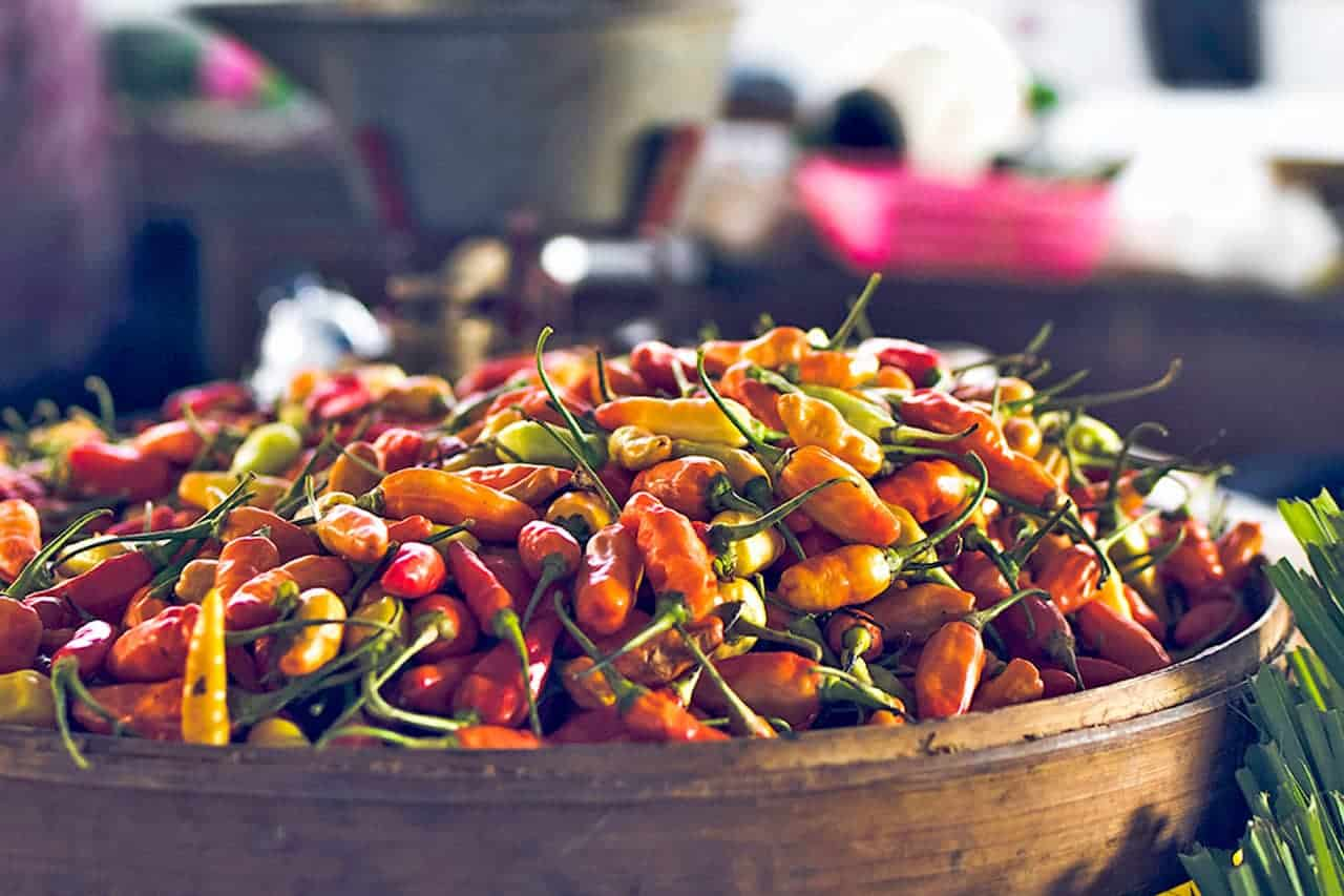 Variety of hot peppers in basket